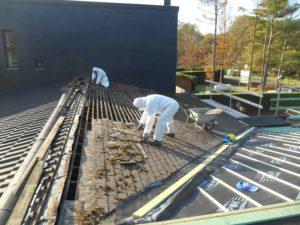 asbestleien-verwijderen-kuiekes-heist-op-den-berg